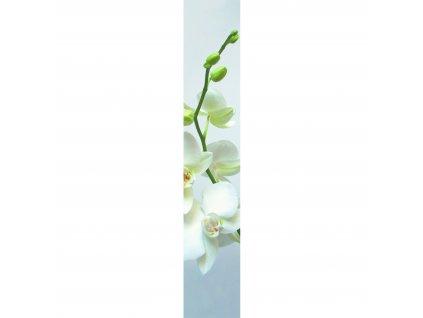 Papírový panel Caselio 67180002, kolekce ACCENT, materiál papír, styl moderní 50 x 280 cm