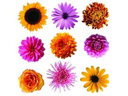 SS3861 Samolepicí dekorace Květiny, 30 x 30 cm