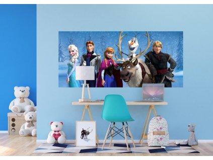FTDNH5384 AG Design 1 dílná fototapeta 90 x 202 cm vlies Frozen