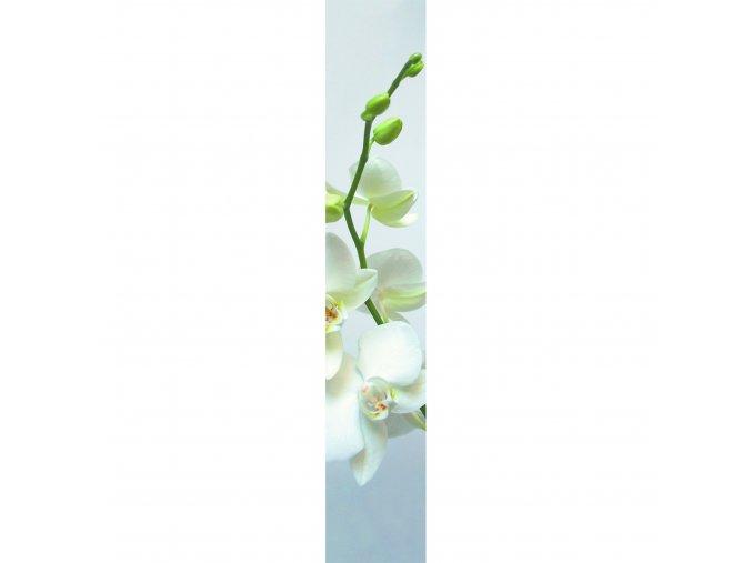 Vliesový panel Caselio 67070002, kolekce ACCENT, materiál vlies, styl moderní 50 x 280 cm