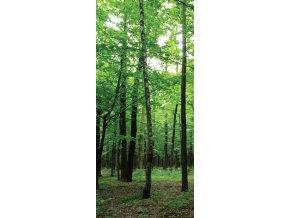 AG Design 1 dílná fototapeta FOREST FTNV 2920, 90 x 202 cm vlies