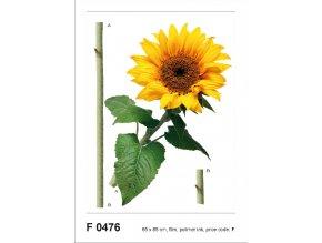 Samolepicí dekorace SUN FLOWER 65 x 85 cm