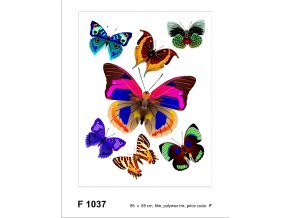 F1037 Samolepicí dekorace BUTTERFLIES 65 x 85 cm