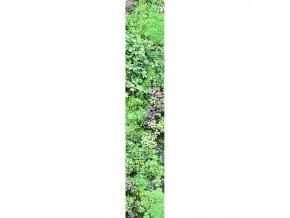 Papírový panel Caselio 67187007, kolekce ACCENT, materiál papír, styl moderní 50 x 280 cm