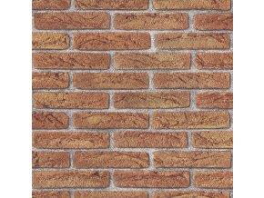 Papírová tapeta na zeď Rasch 276811, kolekce ALDORA, styl moderní, 0,53 x 10,05 m