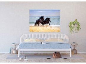 AG Design 1 dílná fototapeta HORSES ON BEACH FTNM2692, 160 x 110 cm vlies