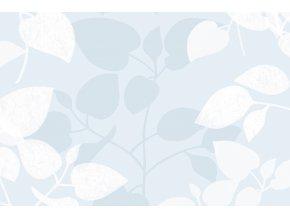 Statická fólie d-c-fix Amena 2160018, transparent, šíře 45 cm