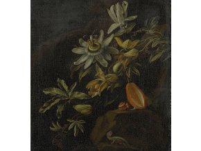 KOL8007 Luxusní fototapeta, Passion Flowers, 5dílná