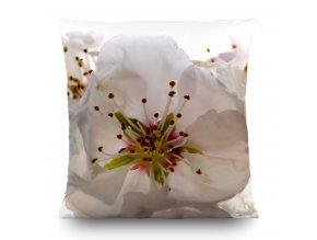 Dekorativní polštářek CN3606 Flowers 45 x 45 cm