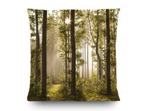 Dekorativní polštářek CN3611 Forest 45 x 45 cm
