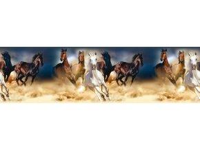 WB8202 Samolepicí bordura, šíře 14 cm Horses, 14 x 500 cm