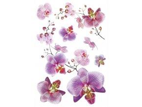 SM3440 Samolepicí dekorace Orchidej, 42,5 x 65 cm