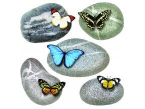 SS3853 Samolepicí dekorace Motýli, 30 x 30 cm