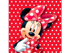 CND3126 Dekorativní polštářek Disney Minnie Mouse