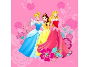 CND3127 Dekorativní polštářek Disney Princess