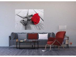 AG Design 1 dílná fototapeta RED ROSE FTNM 2619, 160 x 110 cm vlies