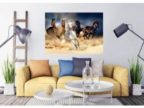 AG Design 1 dílná fototapeta HORSES FTNM  2665, 160 x 110 cm vlies