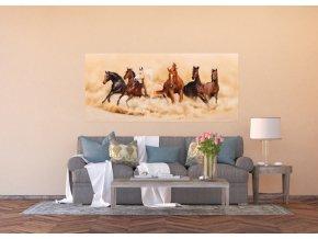 AG Design 1 dílná fototapeta HORSES FTNH 2748, 202 x 90 cm vlies