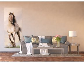 AG Design 1 dílná fototapeta GALLOPING HORSE FTNV 2928, 90 x 202 cm vlies