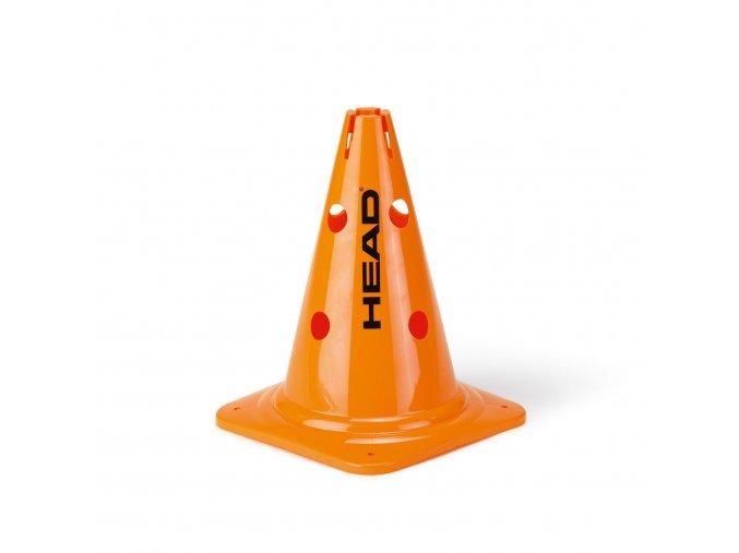 287511 Big Cones