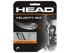 281404 Velocity MLT natural