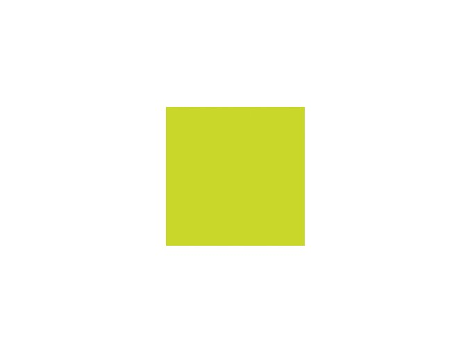 ETERNAL INK Motor City Einzelflaschen und Sets Farbe Set Roadrunner Green[1]