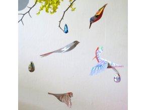 ptaci omalovánky