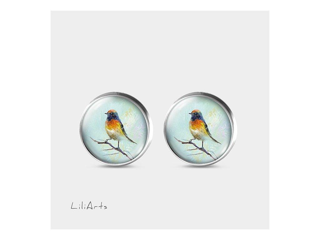 Barevný ptáček - Náušnice s grafickým designem