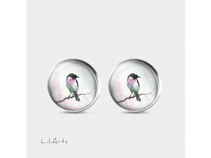 pastelový ptáček - Náušnice s grafickým designem