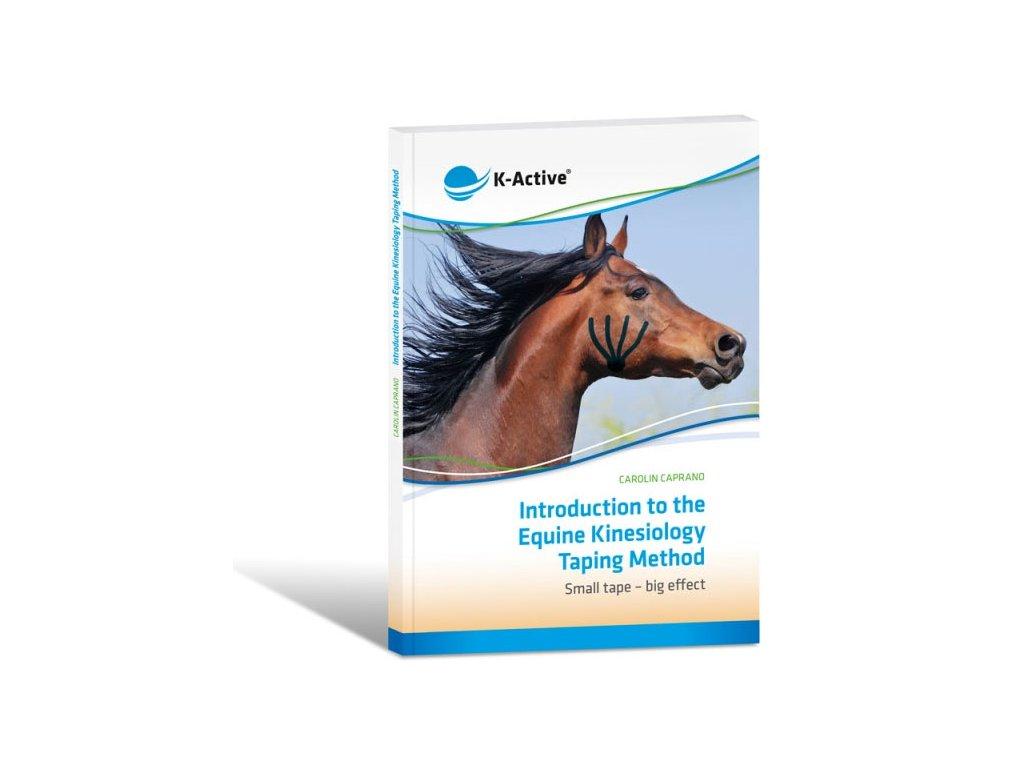 Tejpování koní