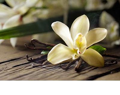 Santalové dřevo a vanilka