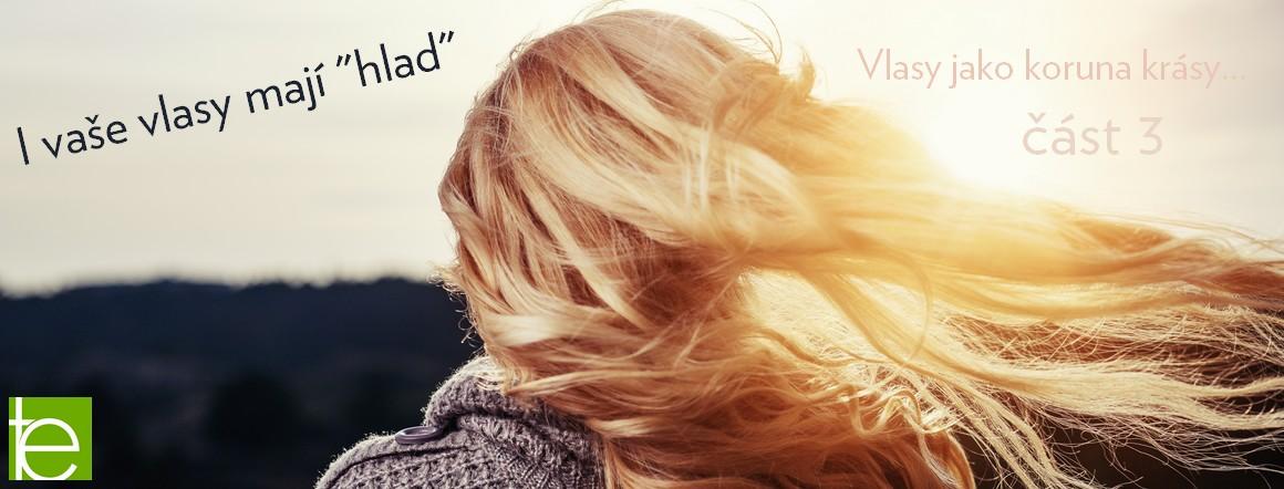 banner-vlasy-3