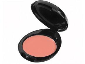 Bio kompaktní tvářenka SKIN DEFENSE LIQUIDFLORA - ROSE PARIS 01