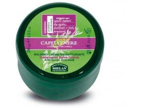 HELAN Vlasový kondicionér na barvené vlasy 200 ml