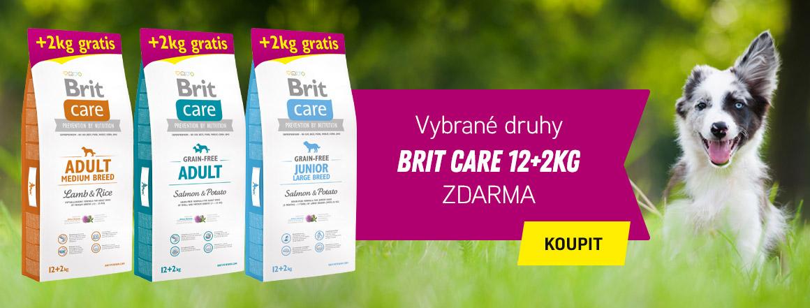 BRIT CARE DOG 12+2