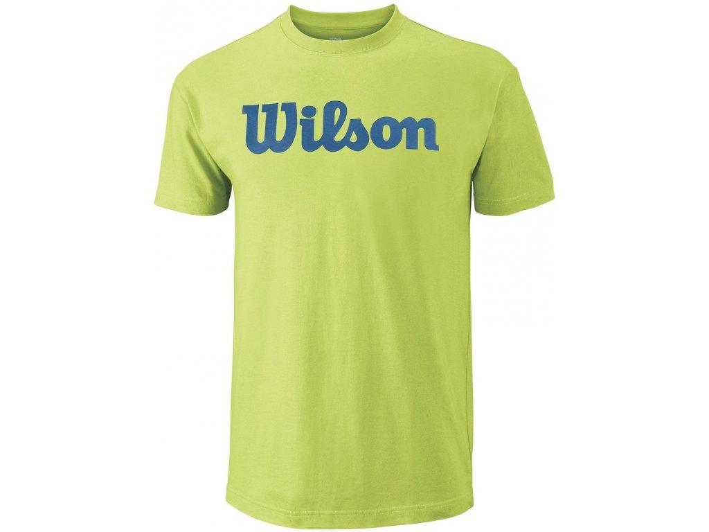 pánské tričko Wilson M Script Cotton Tee  Green/deep water
