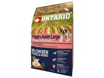 ONTARIO Junior Large Chicken Potatoes (2,25kg)