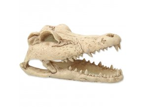 Dekorace REPTI PLANET Krokodýlí lebka 13,8 cm (1ks)
