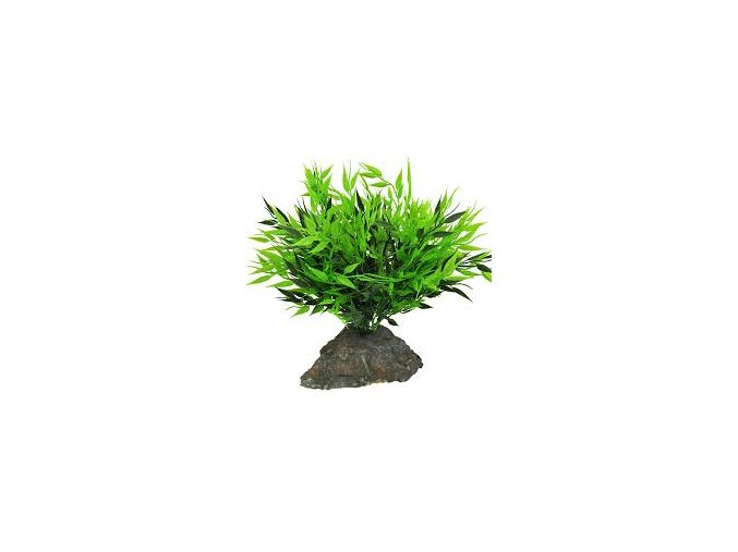 Lucky Reptile Bamboo Tufts cca 25 cm
