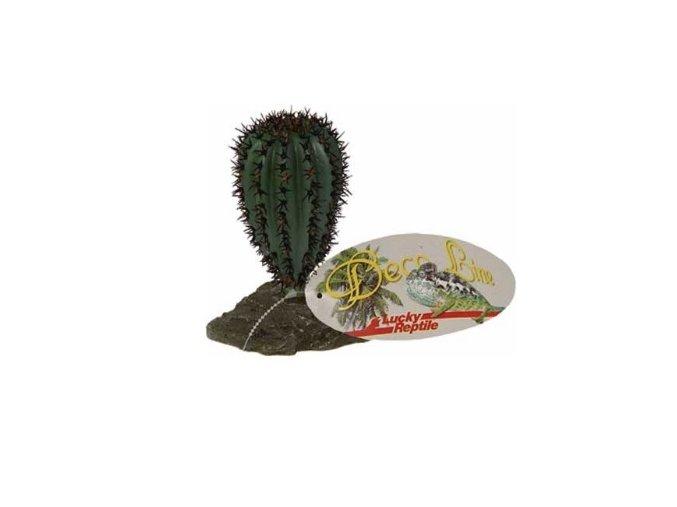 umely kaktus