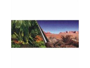 Akvarijní pozadí Jungle+Dessert 120 x 50 cm