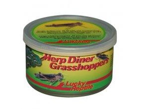 Lucky Reptile Herp Diner Sarančata 35 g (1)