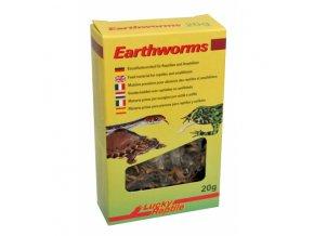 Lucky Reptile Earhworms 10g