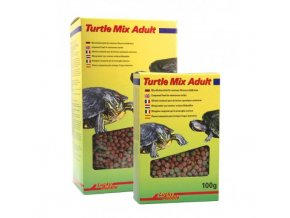 turtle mix adult