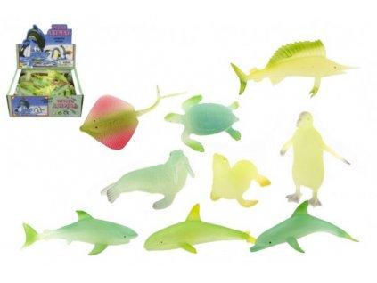 Zvířátka mořská svítící mix druhů