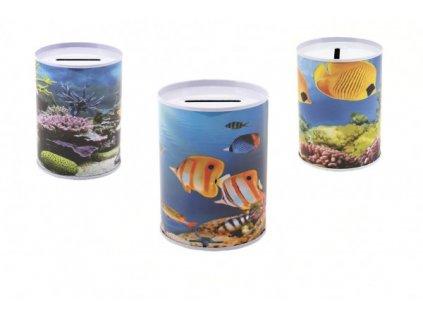 Pokladnička ryby 3 druhy