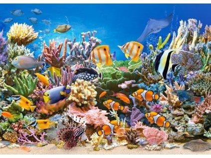 Puzzle Barvy oceánu 260 dílků
