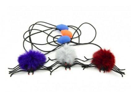 Pavouk skákající  mix druhů