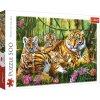 Puzzle Tygří rodina 500 dílků 1