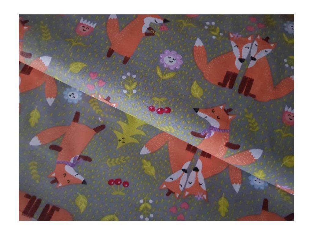 Dětská plátna - Lišky
